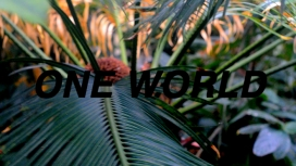 One World - Paul Barsch, Tilman Hornig & Brad Troemel at Info-Punkt